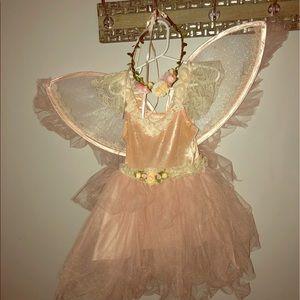Fairy princess costume size 4
